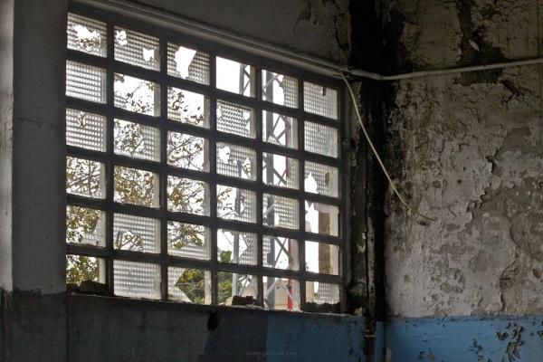 The Broken Window 2