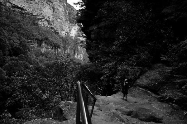 Sylvia Falls valley