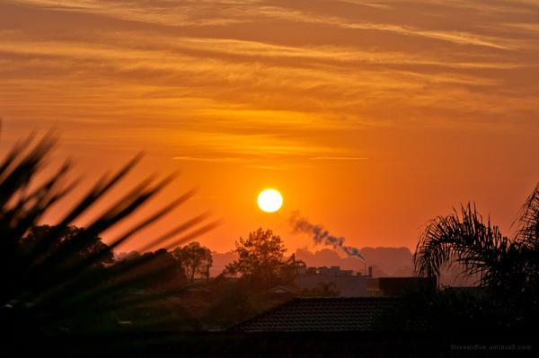 Sunrise over suburbia.