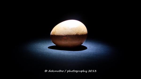 Mini Egg Series #6