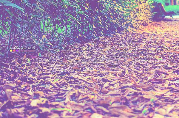 Autumn Side