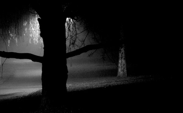 Nuit d'hiver / 5