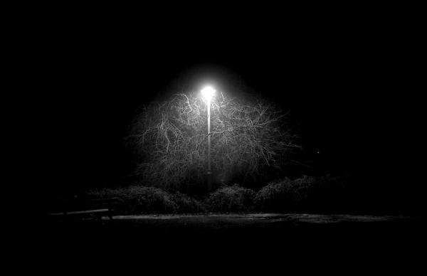 Nuit / 2