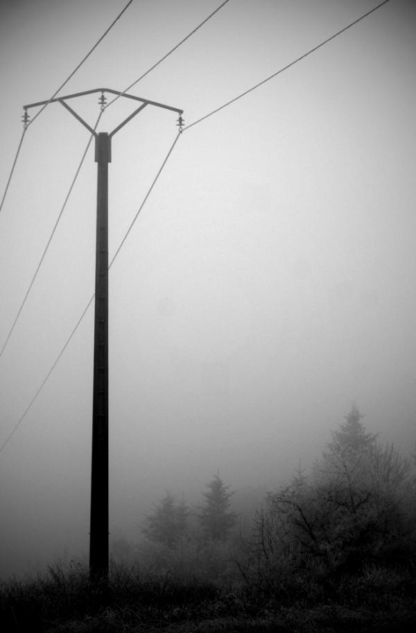 Brouillard / 8