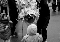 Nouvel an chinois / 1