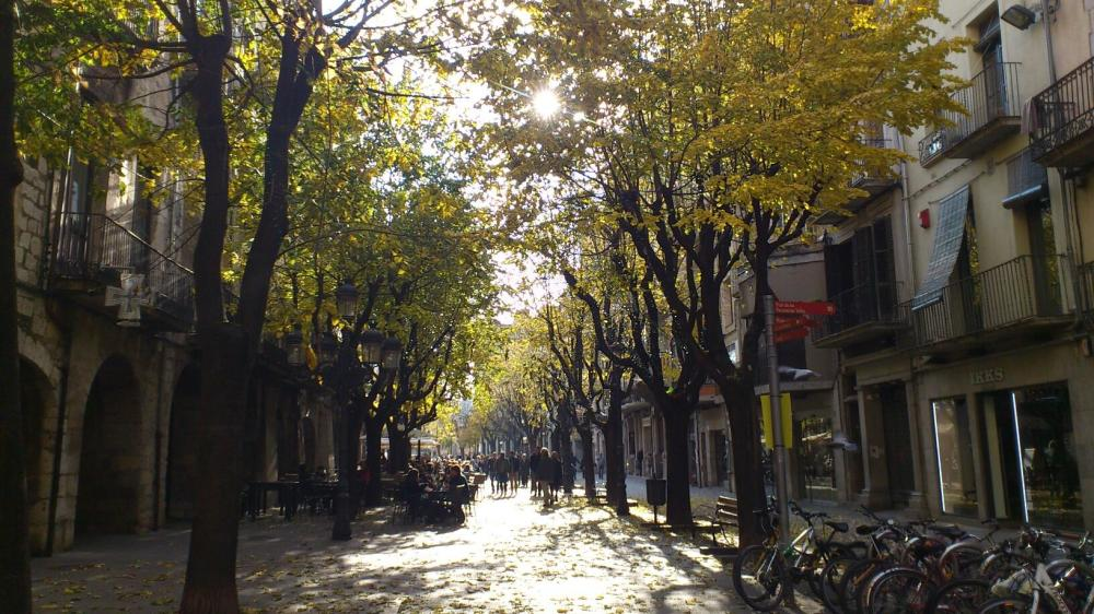 Girona i  la tardor