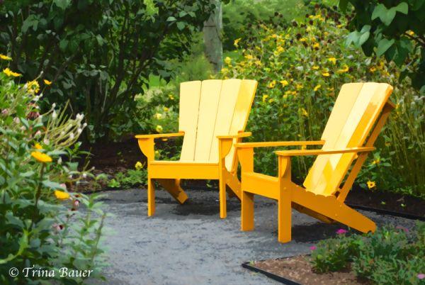 arboretum penn state yellow chairs garden