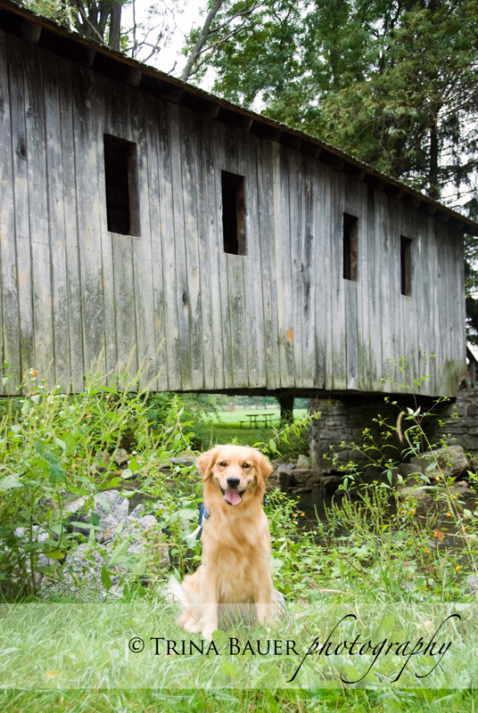 Izzy and the bridge dad built
