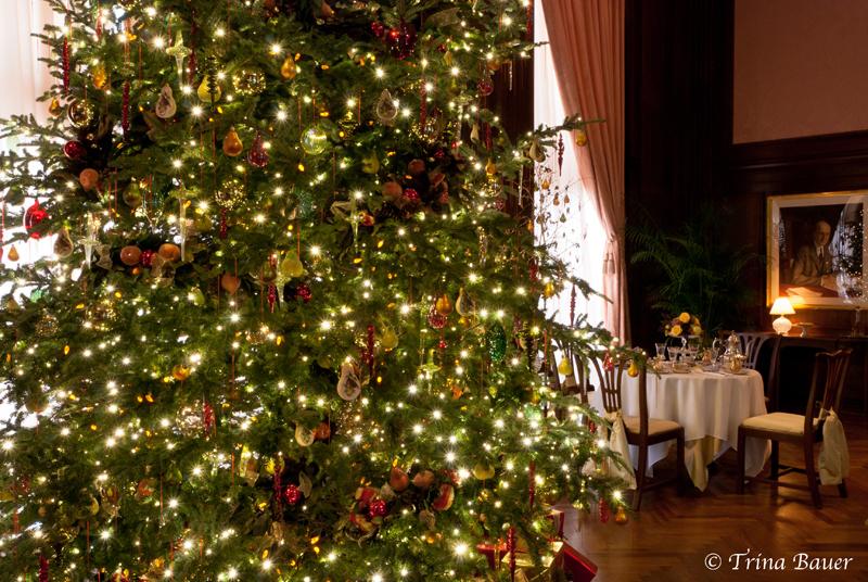 A Longwood Christmas III