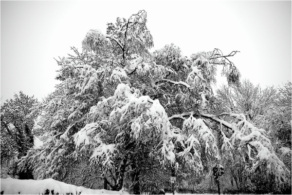 Wenn heute richtig Winter wäre...
