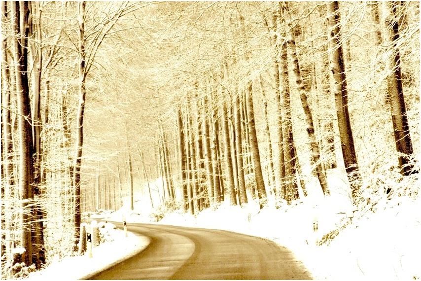 ... auf dem Weg nach Weihnachten