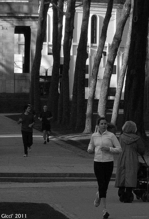 Run Baby Run....