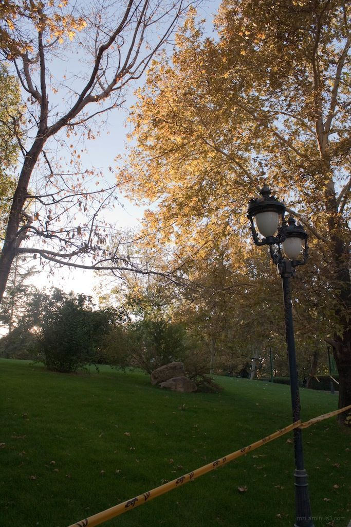 guarding lamp post