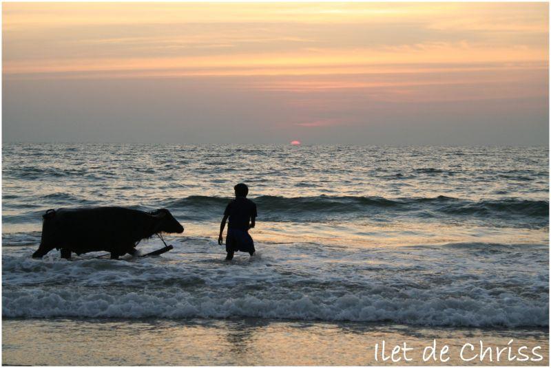 Bain au coucher du soleil