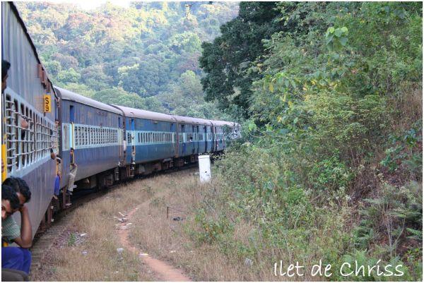 Train arrêté en pleine nature