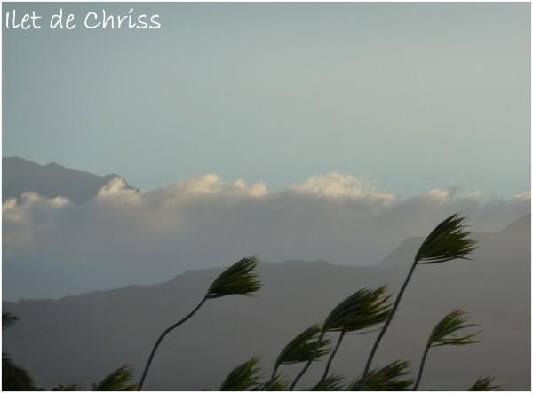 Les sommets de l'île