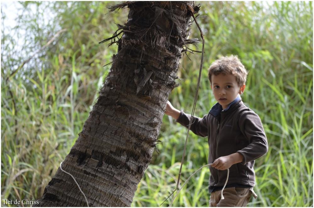 Enfant et arbre