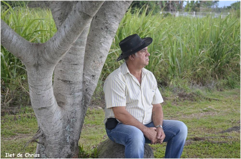 Homme assis sous un arbre