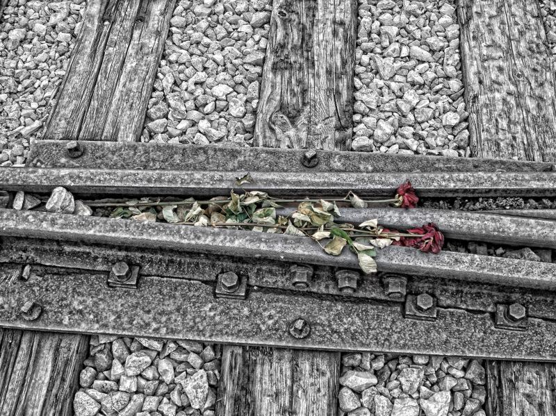 The tracks in Auschwitz -Birkenau