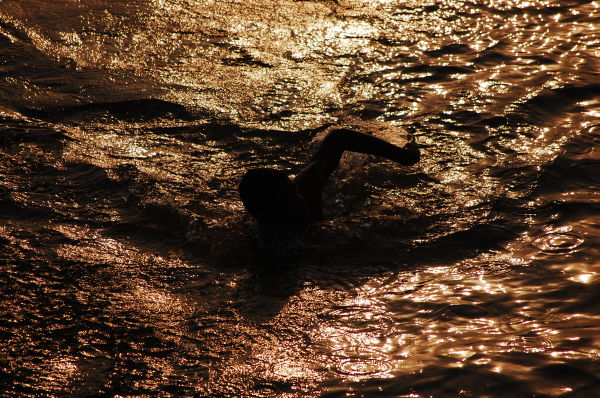 Swimming in the Gold