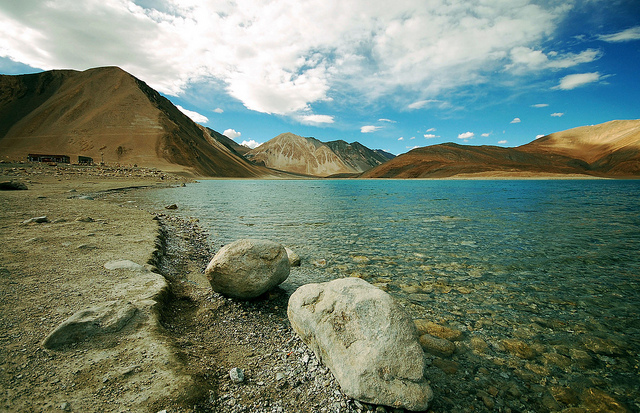 On the shores of Pangong Tso in Ladakh