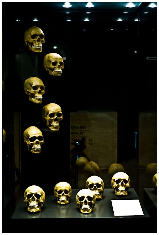 """""""Dodenköppe"""" / skulls"""
