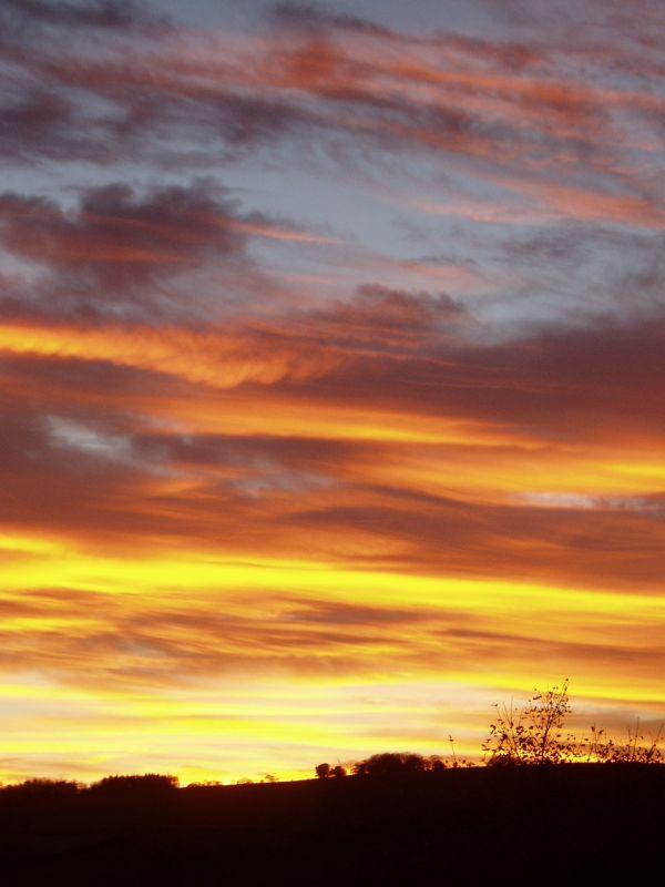 Golden Sky Over Torrance