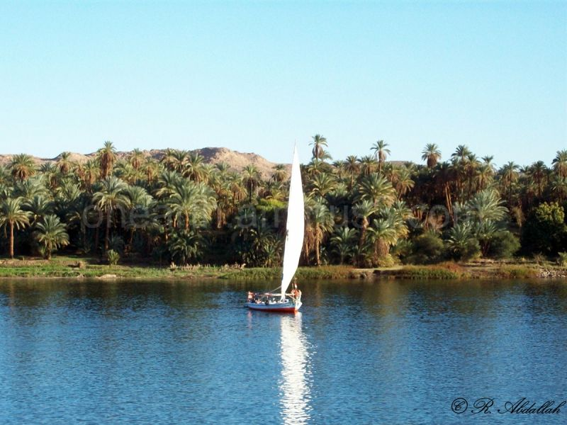 The Great Nile