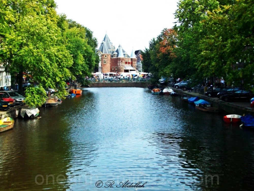 Amsterdam Canals the Netherlands Green
