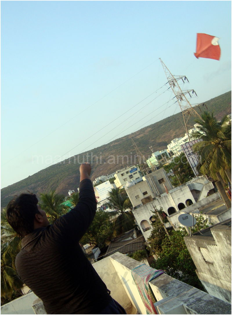 Sunday evening with kites ....
