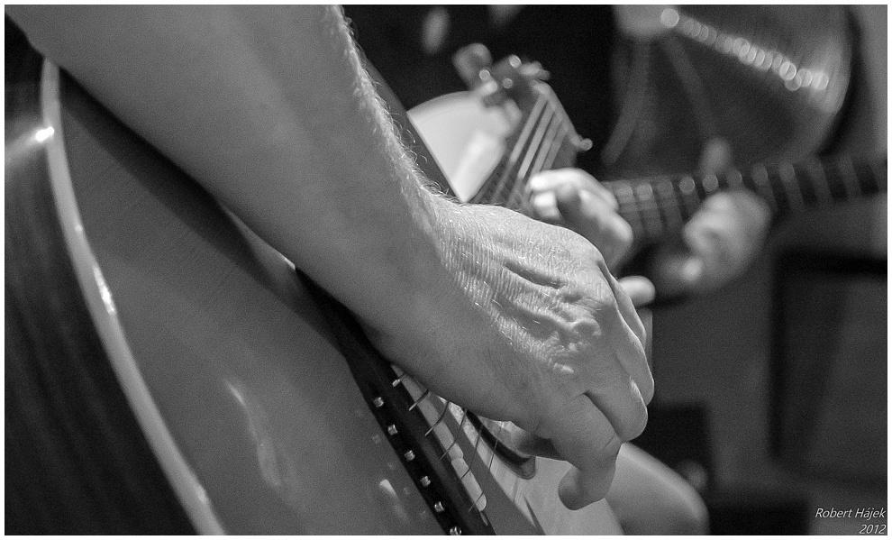 Kytarista.