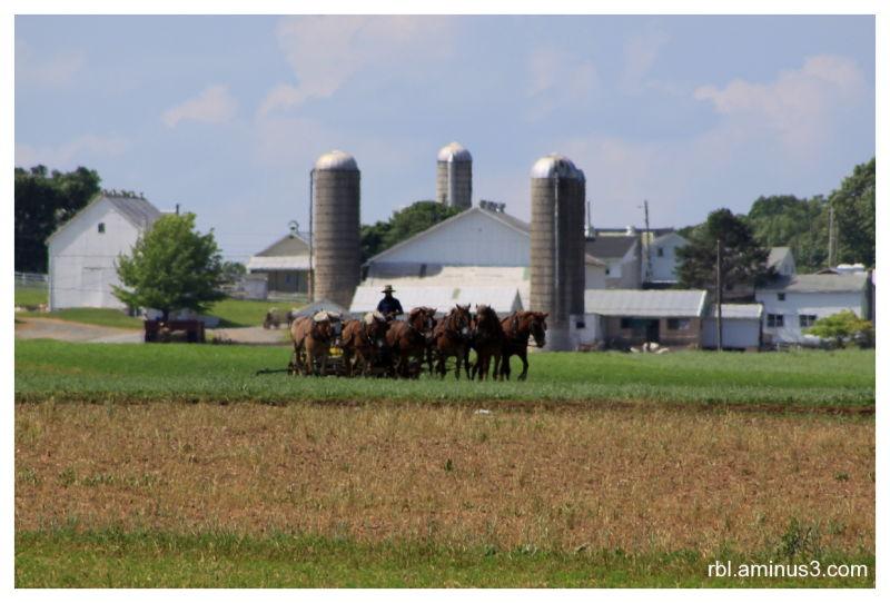 Rosedale Road Farm Lancaster, PA