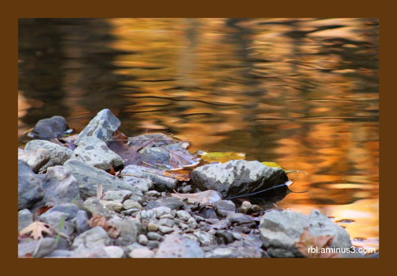 Autumn at Elk Creek