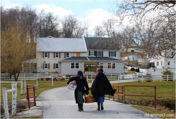 Amish shopping