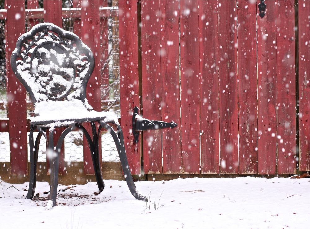 winter seat at the garden