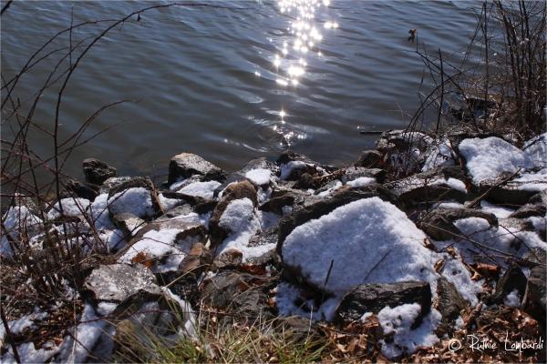 octoraro lake