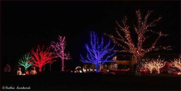 Herr's factory christmas light display