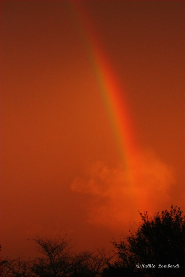 september rainbow