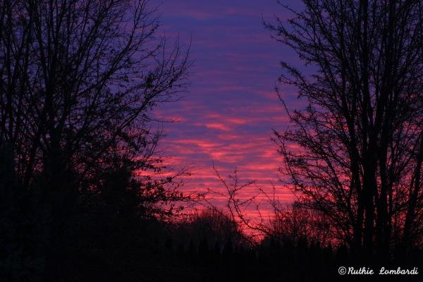sunrise in oxford pa