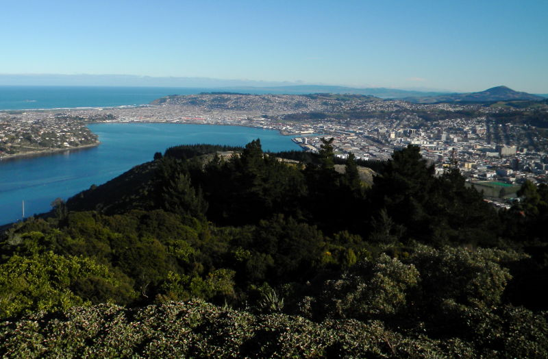 view of dunedin from signal hill