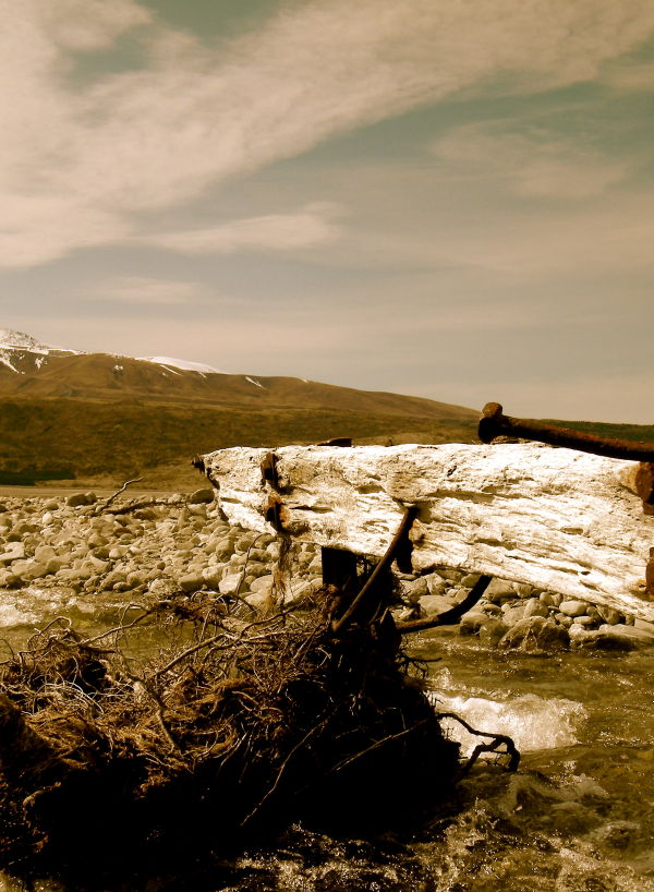 abandon fence post mountain stream