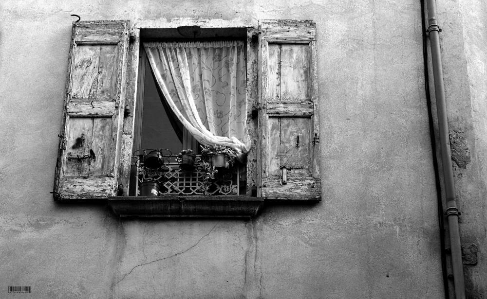 - WINDOWS 1 -