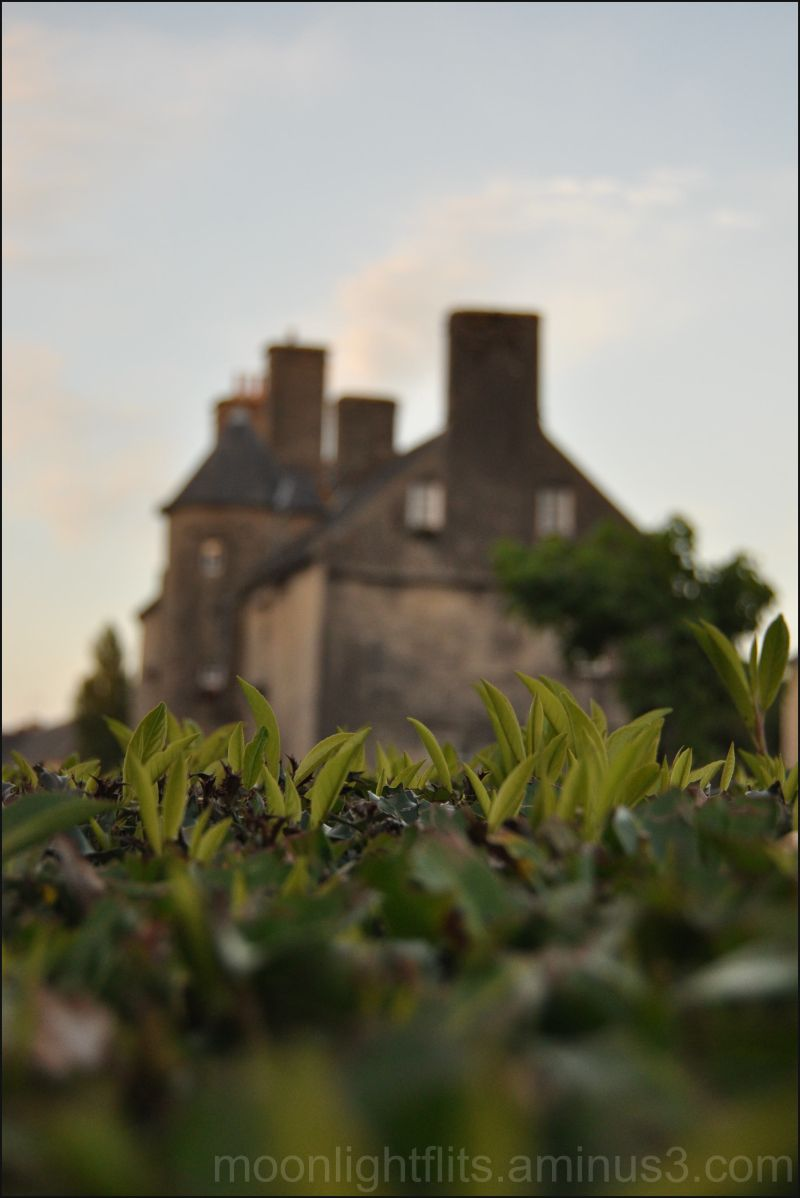 Greenery and Normandy rooftops