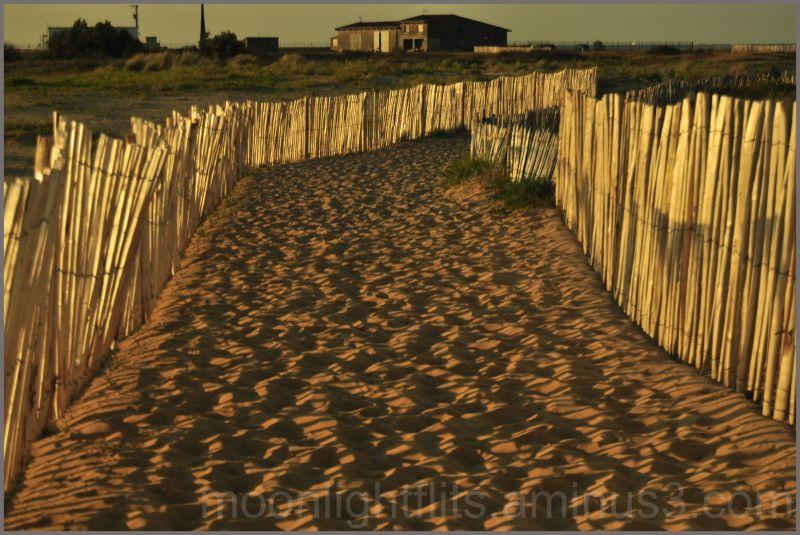 Golden fence