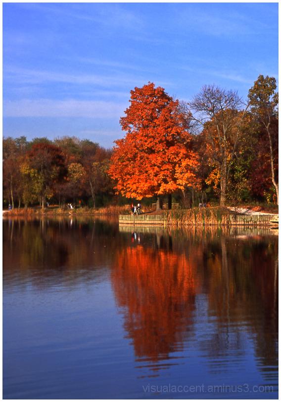 Herrick Lake, IL