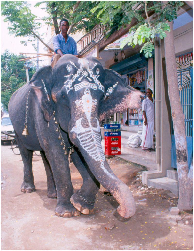 Kanchipuram, India