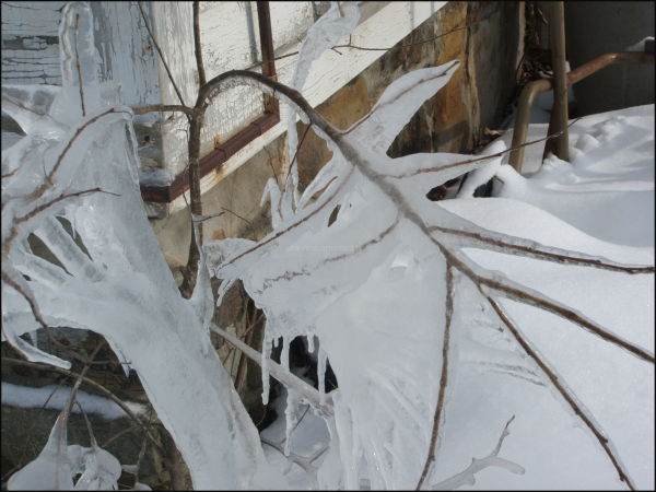 Vermont Winter Ice
