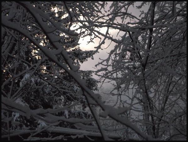 Dawn on a Snowy Morning