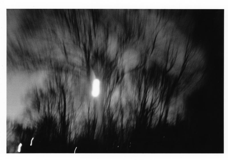 Spooks in Central Park__