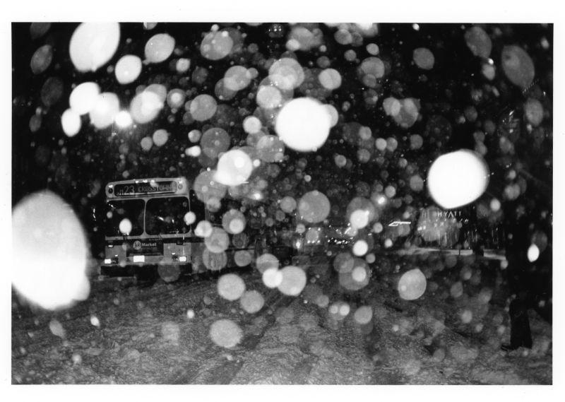 snow in urban night